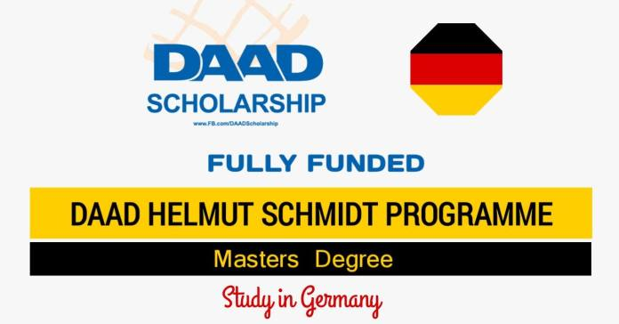 DAAD Helmut Schmidt Programme Fully Funded in Germany