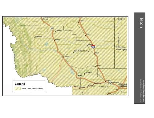small resolution of mule deer distribution teton county
