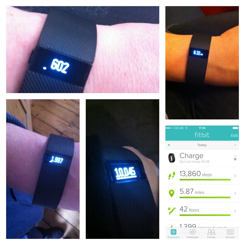 fitbit does it work