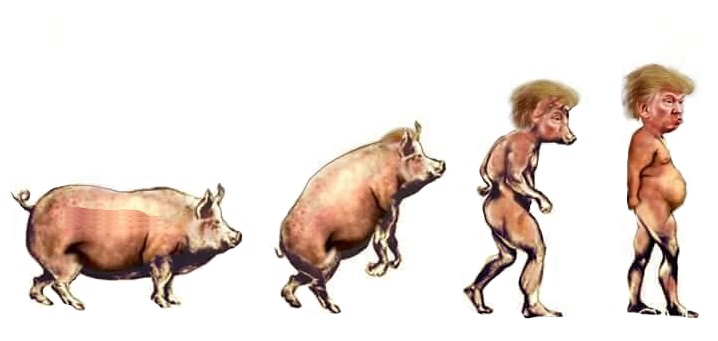 Scientists provide indisputable evidence of Trump evolution