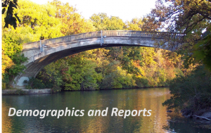 Demographics and Reports icon.jpg