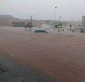 Chuva causa estragos em São José do Rio Preto e região