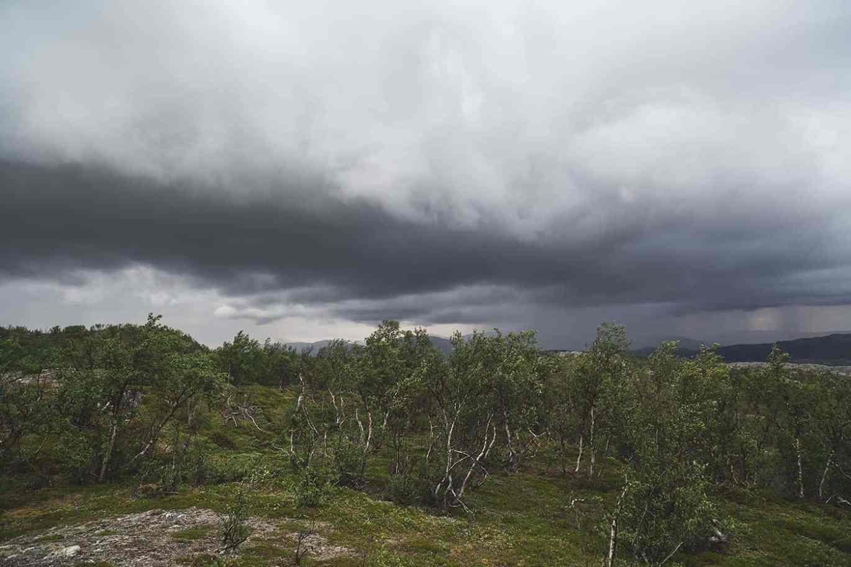 Evigvarende vind på fjellet. Ikke supersmooth. // Foto: Joakim Andreassen