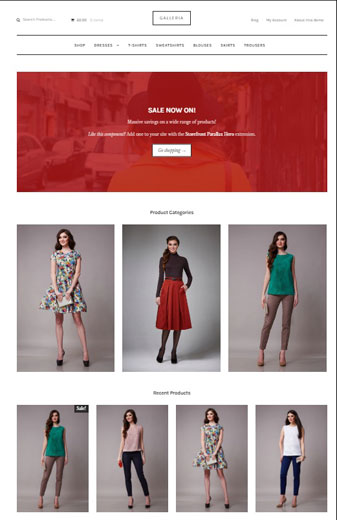 Woothemes Gallery Theme