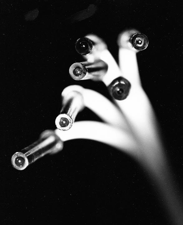 Early optical ferrule terminations