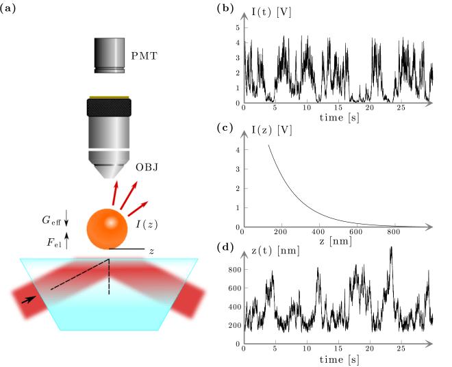 Fig. 10.B1 — Total internal reflection microscopy