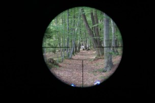 Leica Magnus 1.5-10x42 reticle 4a subtensions at 1.5x