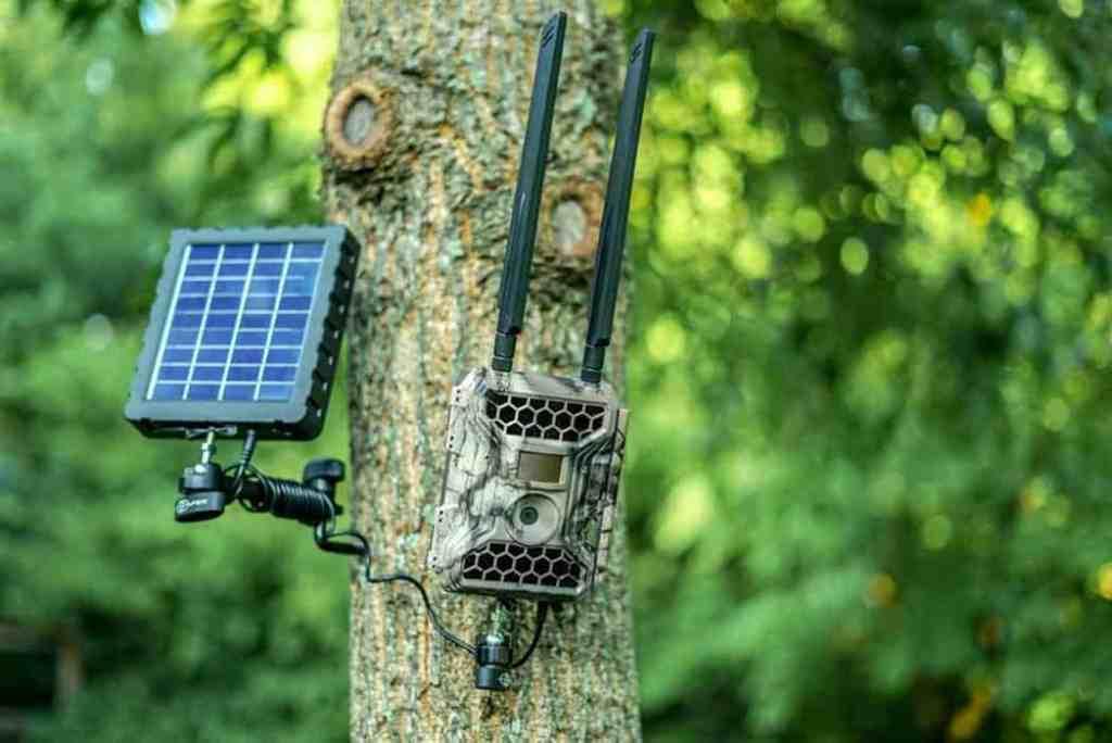 Best Wireless Trail Cameras 2020