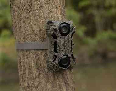Best Wildgame Innovations Trail Camera 2020