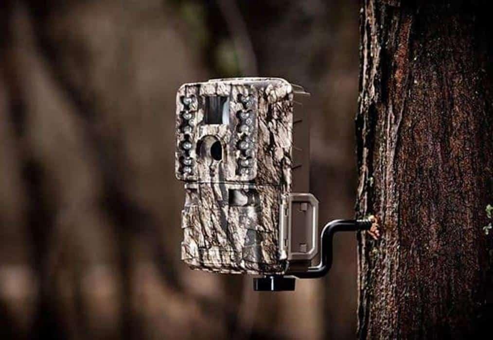 How To Setup And Use Trail Camera