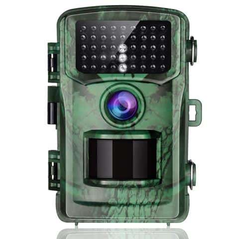 Best Motion-activated Wildlife Camera 2020
