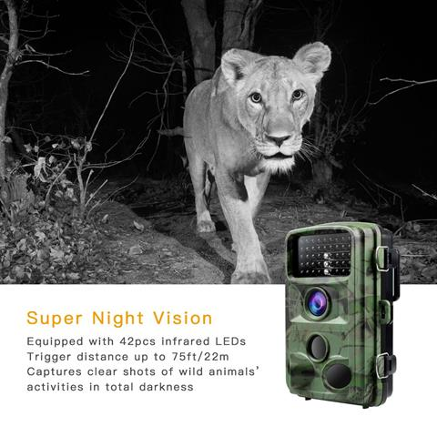 TOGUARD Trail Camera 14MP Reviews