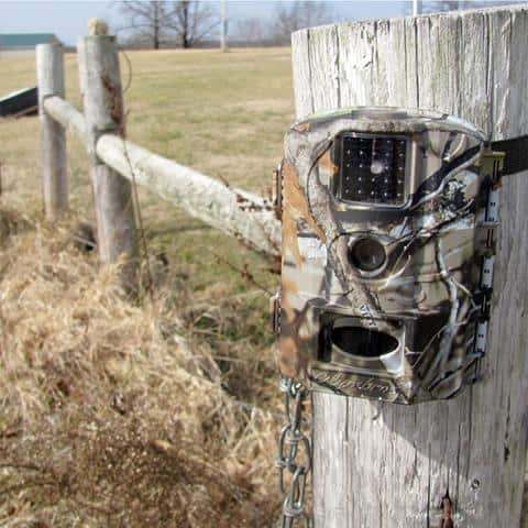 My Trail Camera Not Taking Pictures