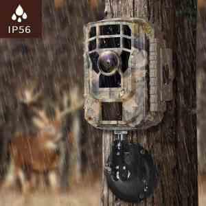 How Do Trail Cameras Works