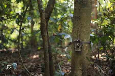 How To Aim A Trail Camera