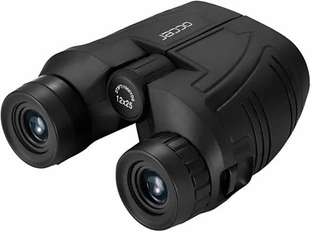 Best compact binoculars 2021
