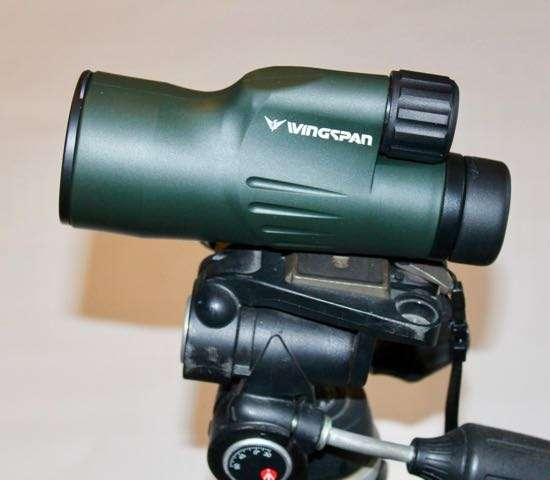 Wingspan 10×50 Monocular: Good Glass for a Great Price