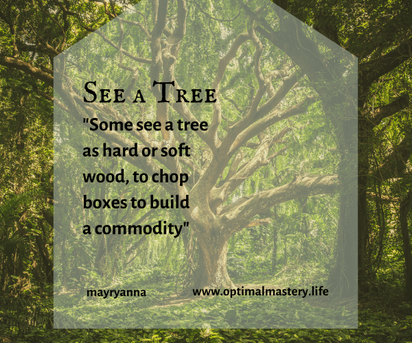 See a Tree