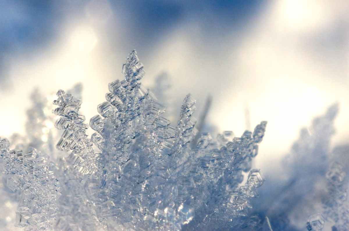depth of field photography of ice shards