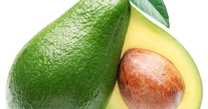 Avokado-næringsrikt-lite-kalorier