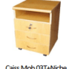 Caiss Mob03T+Niche, CM0002(60X46.5X44)