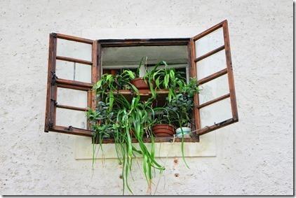 window-891139_960_720_thumb1