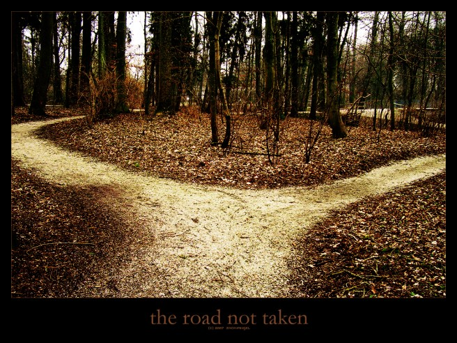 the_road_not_taken