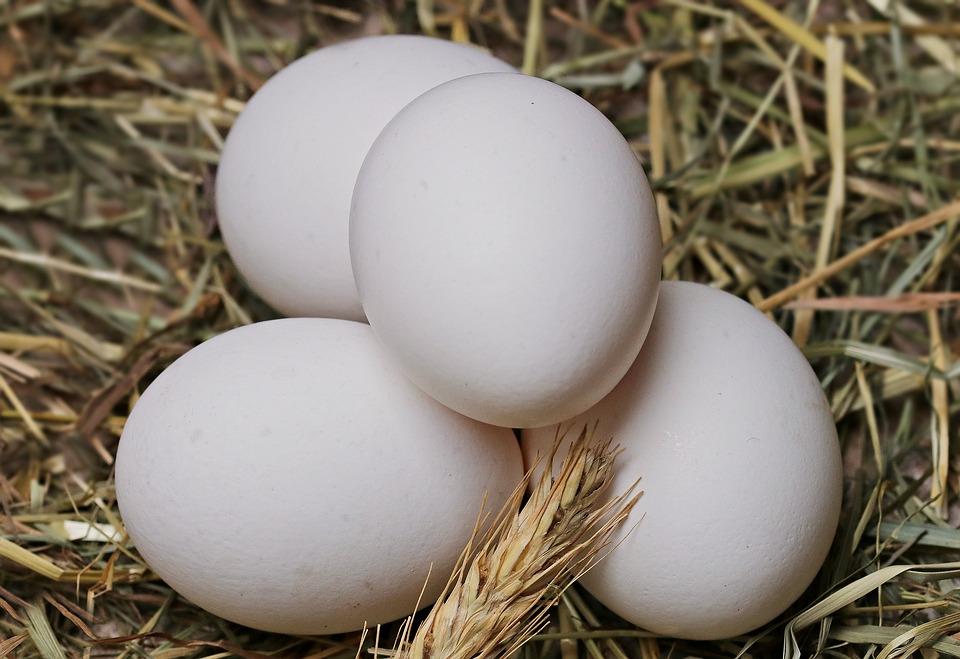 Use of Egg White for Fair Skin