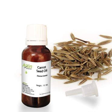 carrot seed essential oil for hair loss
