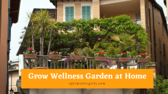 How to Grow Your Own Wellness Garden at Home