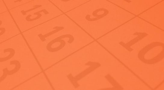 12-month SEO plan details