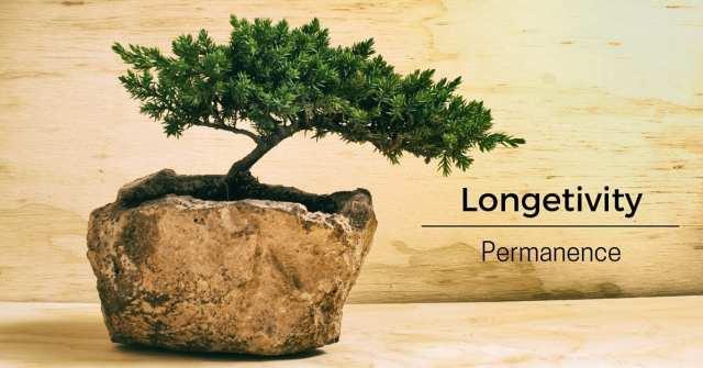 longevity marketing performance image