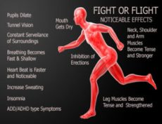 Fight or Flight, Noticeable Effect