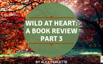 Wild at Heart: A Book Review – Part 3