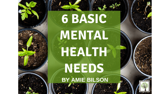 6 Basic Mental Health Needs