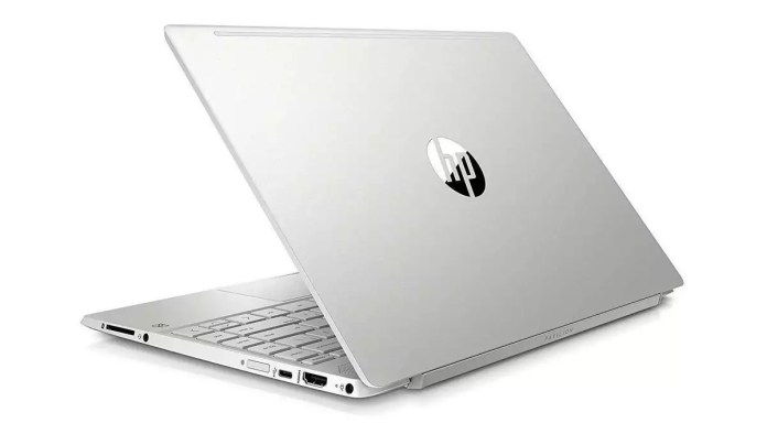 HP Pavilion 13-an0042nf Argent naturel