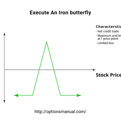 Butterfly Spread Option Payoff Diagram Cell Structure And Function Execute An Iron Profit From Low Volatility The Options Introduction To Strategy