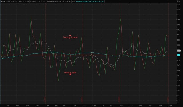 ThinkorSwim/S&P 500 Put/Call Ratio - as of 08/22/21
