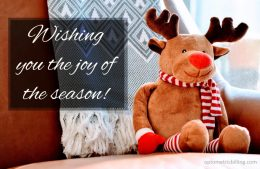 Joy of season