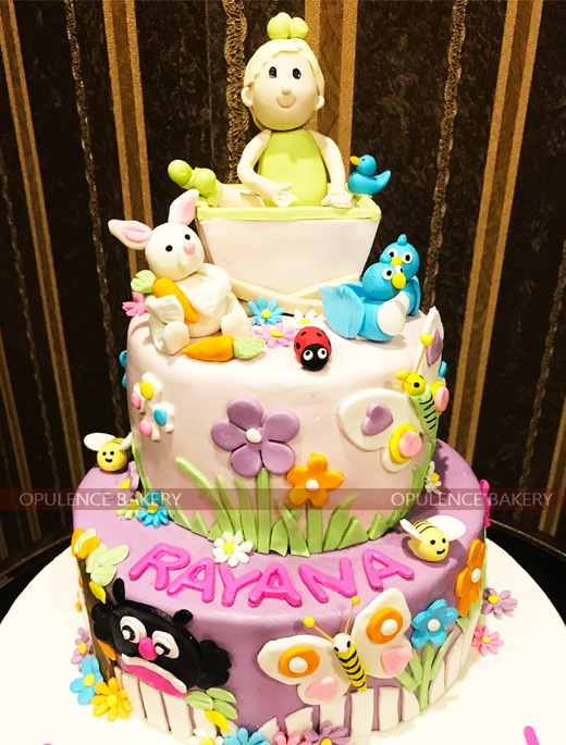 Birthday Cake For One Year Old Baby Girl 5 Pounds Cake Opulence