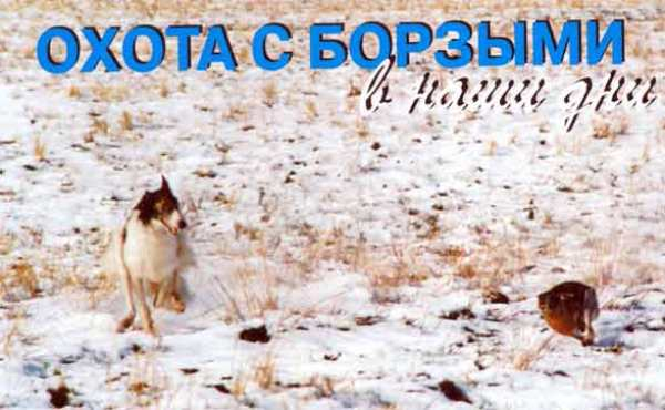 Фото Владимира Киселёва