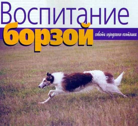 Фото Сергей Тишкевича и Владимира Киселёва