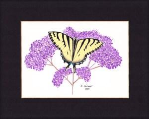 Old Butterflies 3 sm