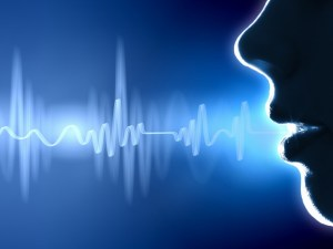 Don't Draw the Wrong Conclusions About Voice Biometrics and HMRC |