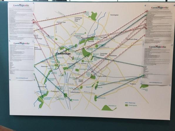 Map of Cambridge Wildlife groups, by Cambridge Wild