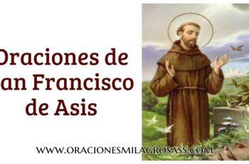rezos de san francisco de asis