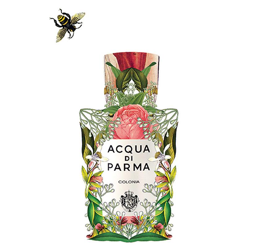 Sixto-Juan-Zavala-Perfumes.1