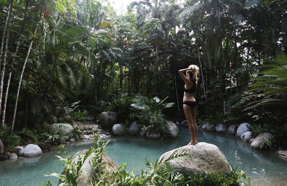 Silky, Oaks, Daintree, Pool, Travel, Oracle, Fox, Explore, Natural, Pool, Back, Bikini