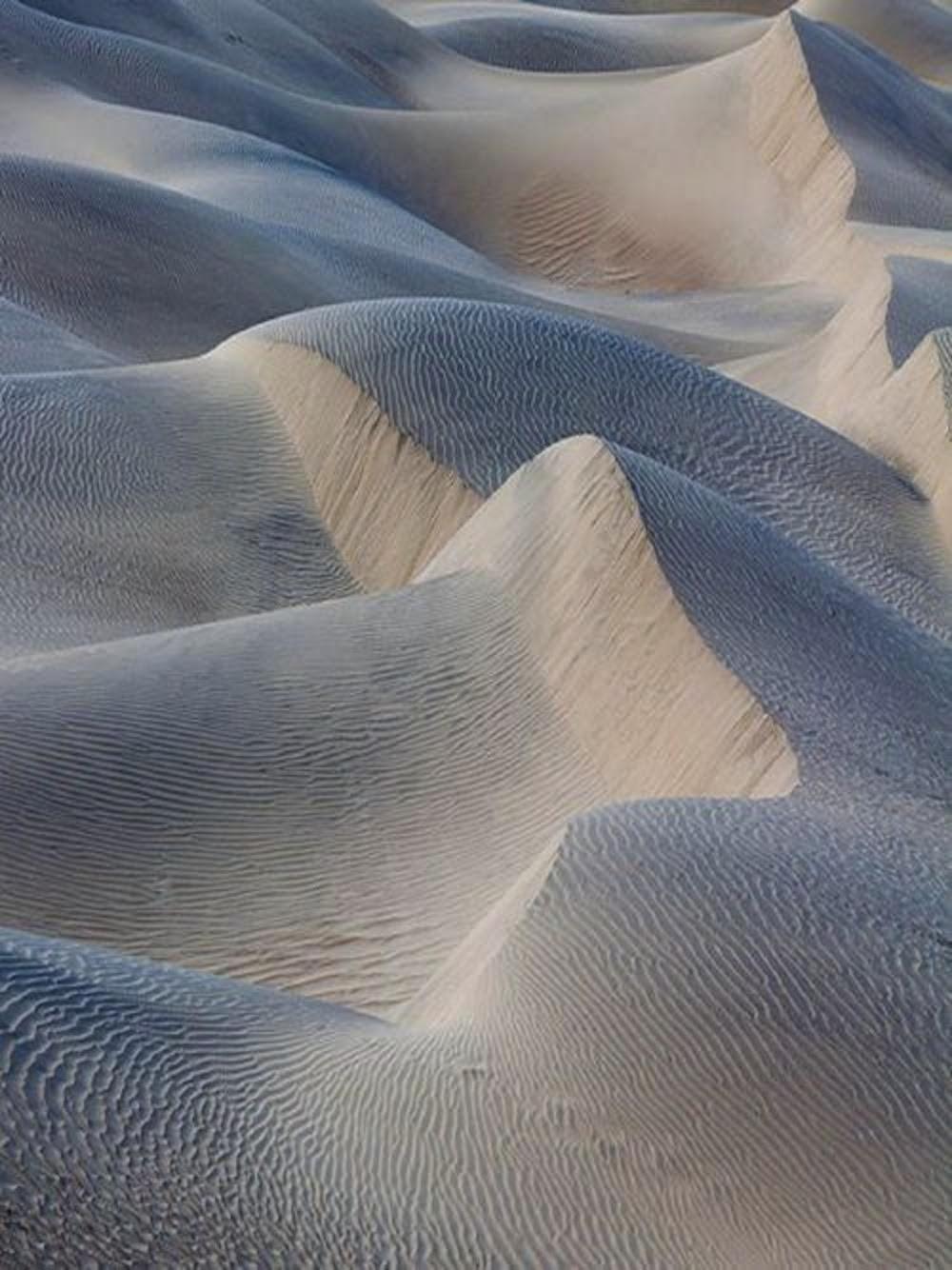 sand-dunes-inspo-neutrals-oracle-fox