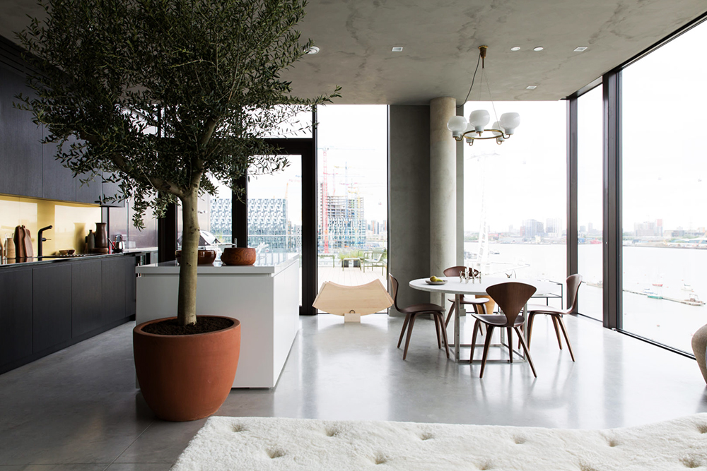 the cereal abode, london, conran partners, interiors, home, apartment, interiors, sunday sanctuary, oracle fox